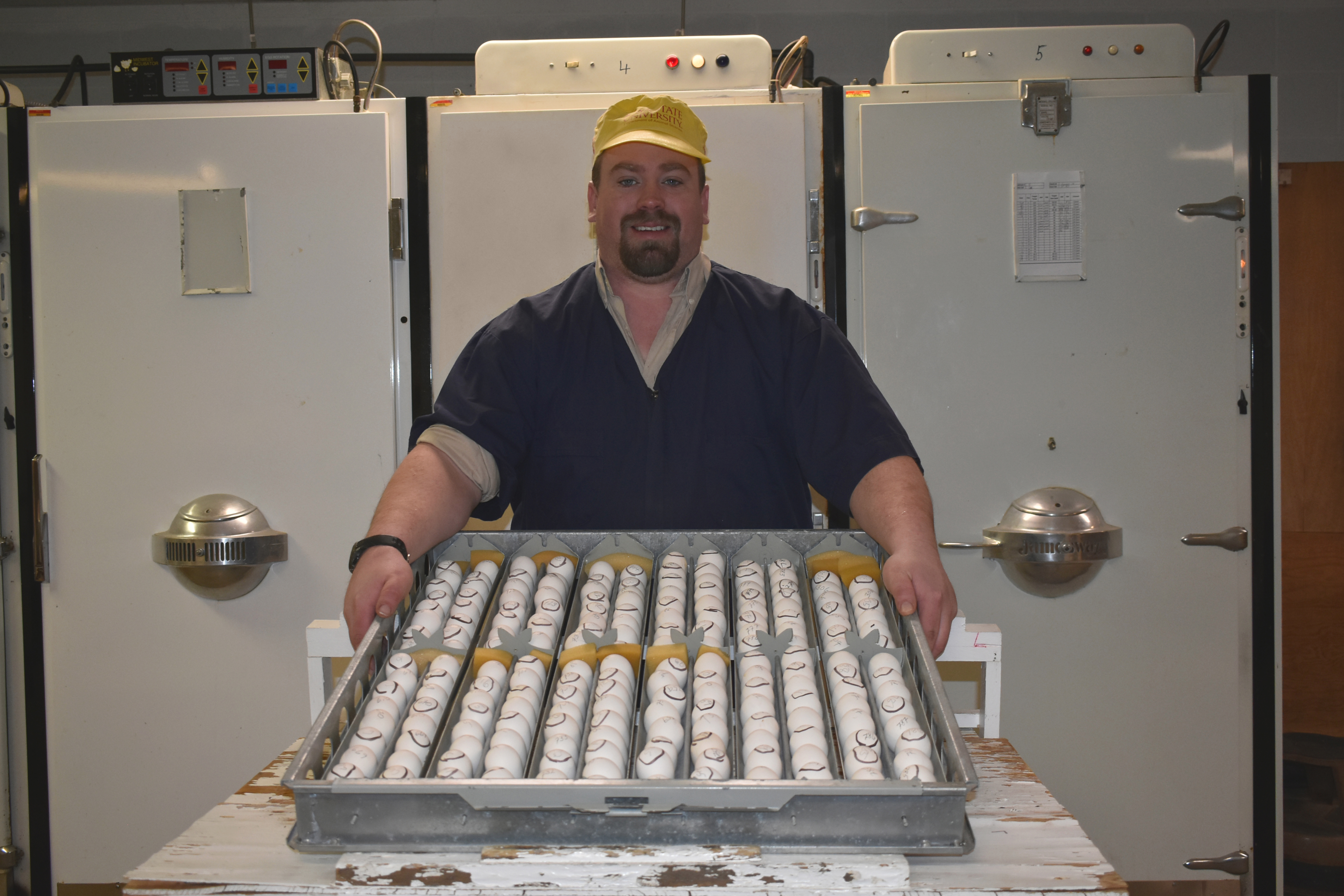 Farm manager Cam Hall with egg tray