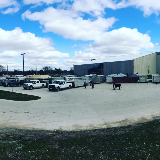Livestock trailers at Cyclone Classic