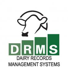 Dairy Records Management Logo