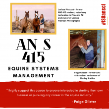 Animal science 415 - equine systems management